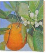 Orange en Bouton Wood Print