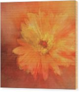 Orange Flower Energy Wood Print