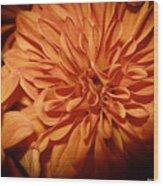 Orange Flower Enhanced 2016 Wood Print