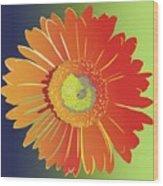 Orange Gerbera Daisy Wood Print