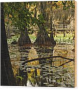 Orange Glow In The Forest Wood Print