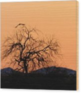 Orange Glow Sunset In The Desert Wood Print