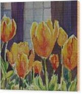 Orange Glow Tulips Wood Print