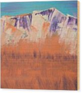 Orange Grass Wood Print