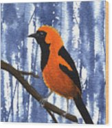 Orange-headed Oriole Wood Print