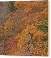 Orange Hill Wood Print