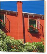 Orange House In Venice Wood Print