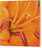 Orange II Wood Print
