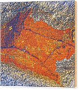 Orange Lichen Wood Print by Heiko Koehrer-Wagner
