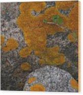 Orange Lichen On Granite Wood Print
