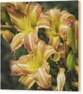 Orange Lilies Portrait Wood Print