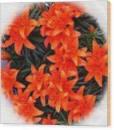 Orange Lilies Vignette Wood Print