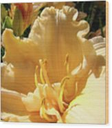 Orange Lily Flower Floral Art Prints Baslee Troutman Wood Print