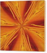 Orange Marmalade Wood Print
