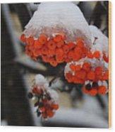Orange Mountain Ash Berries Wood Print