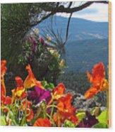 Orange Nasturtium Against Mountains Wood Print