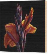 Orange On Black Wood Print