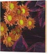 Orange Petals And Purple Leaves Wood Print