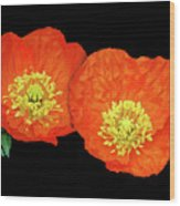 Orange Poppy Collage Cutout Wood Print