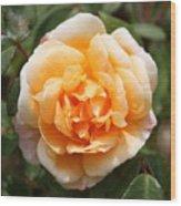 Orange Rose Square Wood Print