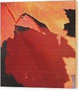 Orange Shadows Wood Print