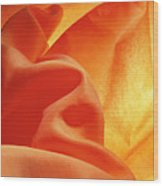Orange Silk Wood Print
