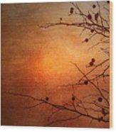 Orange Simplicity Wood Print