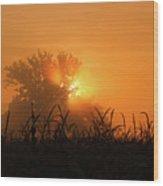 Orange Sky Rising Wood Print