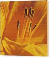 Orange Stamens Wood Print