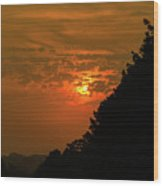 Orange Sunset With Tree Silhouette Wood Print