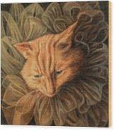 Orange Tabby Wood Print