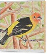 Orange Tanager Wood Print