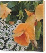 Orange Teardrop With White Lace Wood Print
