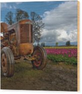 Orange Tractor At Tulip Field Wood Print