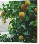 Orange Tree Wood Print by Lorraine Devon Wilke