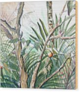 Orange Tree Wood Print