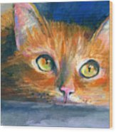 Orange Tubby Cat Painting Wood Print by Svetlana Novikova