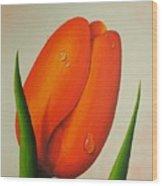 Orange Tulip Still Life Wood Print