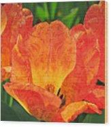 Orange Tulips With Brocade Wood Print