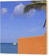 Orange Wall-st Lucia Wood Print