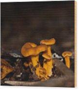 Orange Woodland Mushrooms Wood Print