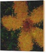Orange-yellow Flower Wood Print