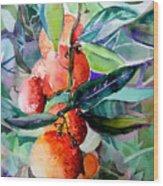 Oranges Wood Print by Mindy Newman