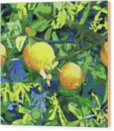 Oranges On Vine IIi Wood Print