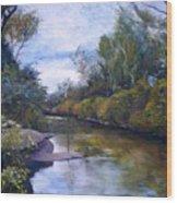 Orara River Nsw Australia 1995   Wood Print