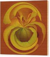 Orb 1 Wood Print