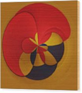 Orb 9 Wood Print