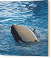 Orca 3 Wood Print