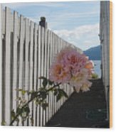 Orcas Island Rose Wood Print