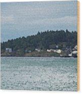 Orcas Island View  Wood Print